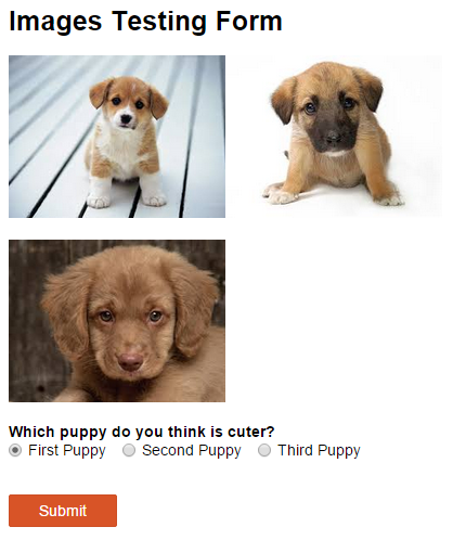 Puppy survey
