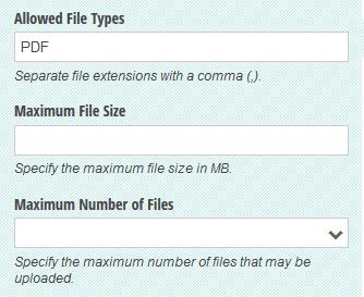 File Upload field settings